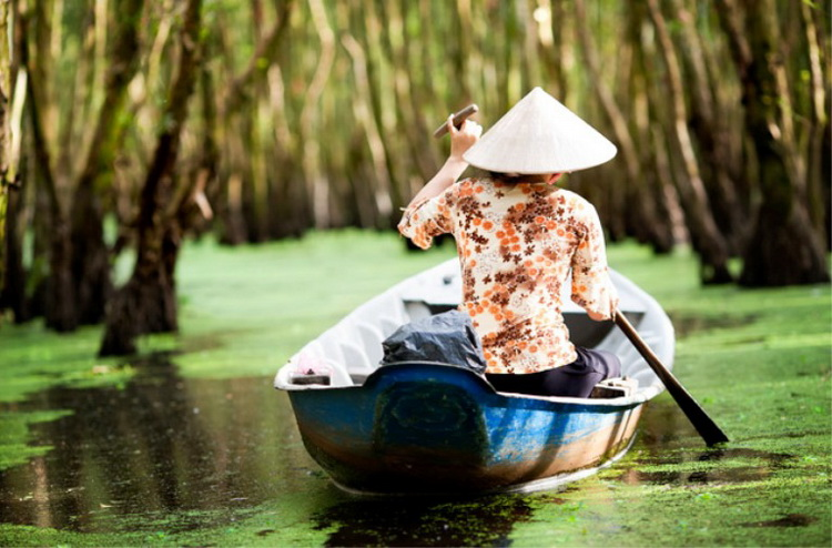 Dinghy is the favorite transport of tourists when visiting Tra Su Cajuput Forest - Photo: Interne