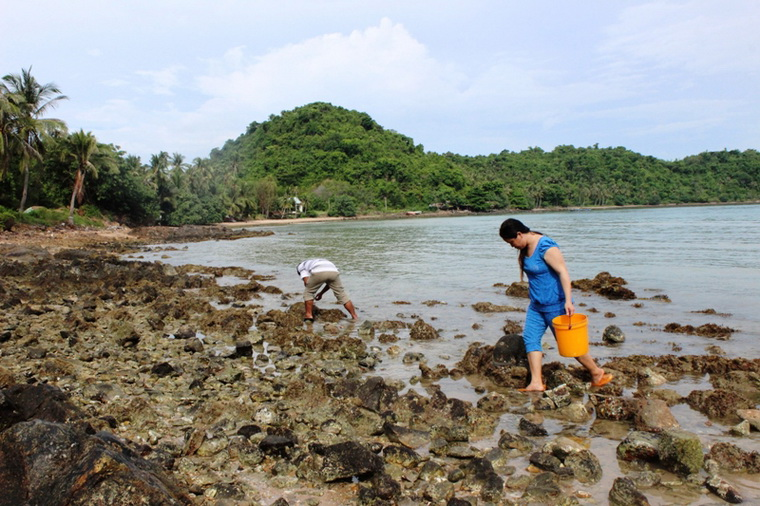 Together catching sea snails then turning them into mouth-watering dishes -  Photo: Hong Tam