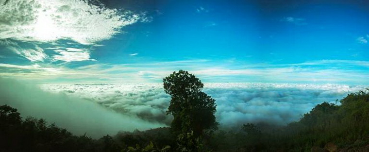 Trees at the top of the mountains seem to be sinking into the white clouds - Photo: Ờ! Phượt Đi! group