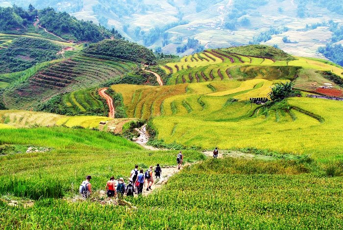 Sapa has one of the longest path for trekking of the world - Photo: Internet