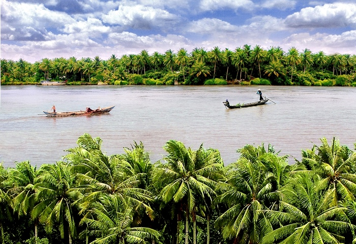 Ben Tre Province is considered the coconut land of Vietnam - Photo: Internet