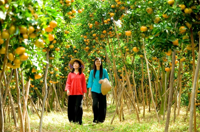 The Orchards in Ben Tre atract a large amount of toirist -  Photo