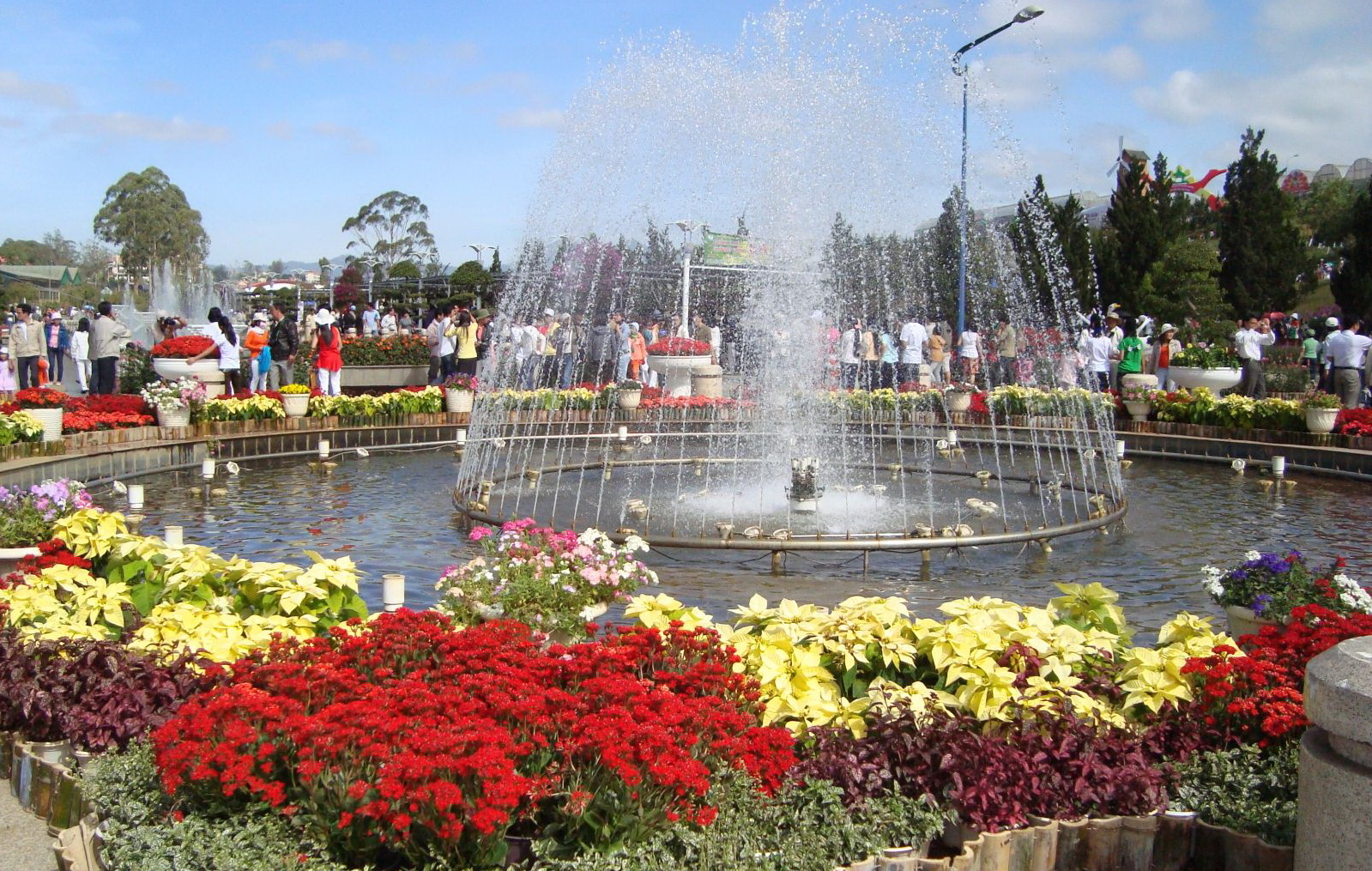Dalat Flower Park - Photo: Internet