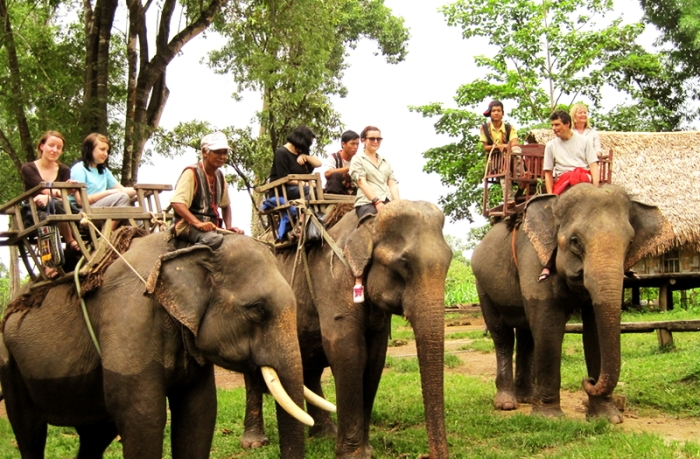 Riding elephant is the major transportation of Don Village Dak Lak Province) and unique in Vietnam - Ảnh: Internet