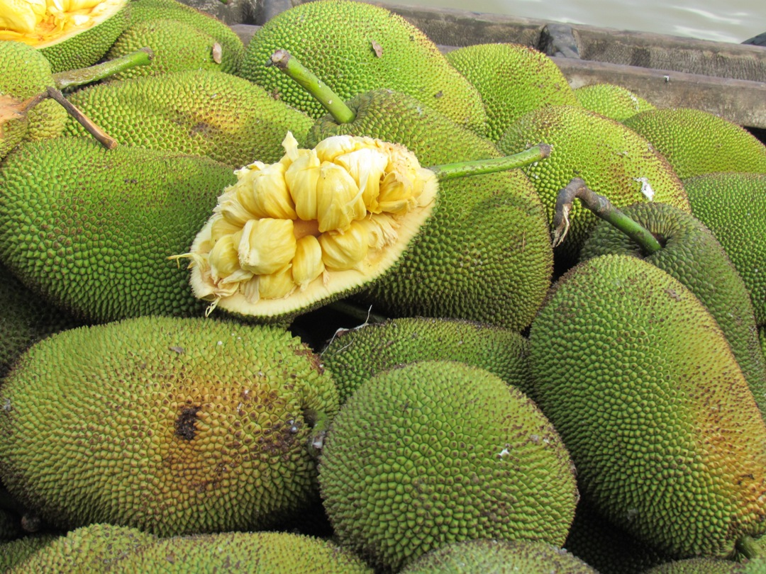 Jackfruit (or Mít) - Photo: Internet