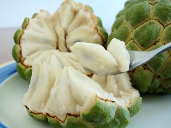Soursop (or Mãng Cầu, or Na) - Photo: Internet