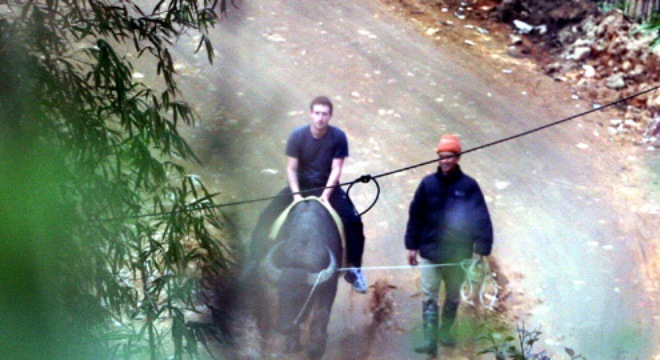 CEO Mark Zuckerberg of Facebook did have his chance to rife a buffalo when traveling to Sapa (Lao Cai Province) - Photo: Internet