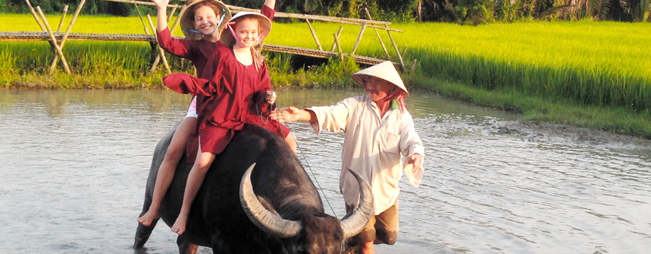 Tourists fascinatingly enjoy their buffalo rides in Hoi An Vietnam (Quang Nam Province) - Photo: Hoi An Eco Tour