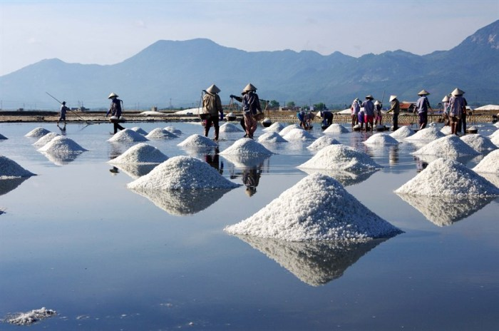 Salt fields and salt makers working on them are featured sights of Phu Yen Province - Photo: Internet