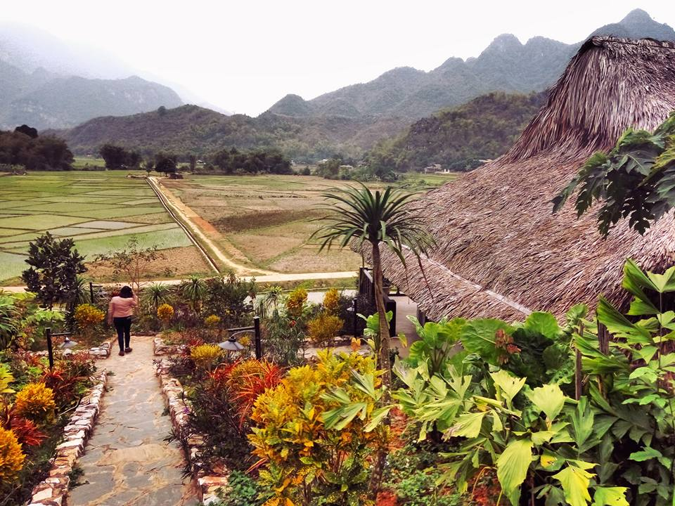 Beautiful view of rice field and mountain (Photo: Hai Le)