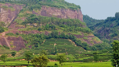 Across Fujian province, visitors will encounter many terraced fields on the mountain