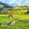 Fantastic things are waiting for you in Sapa, Vietnam