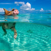Travel to the Bahamas - home of the swimming pigs